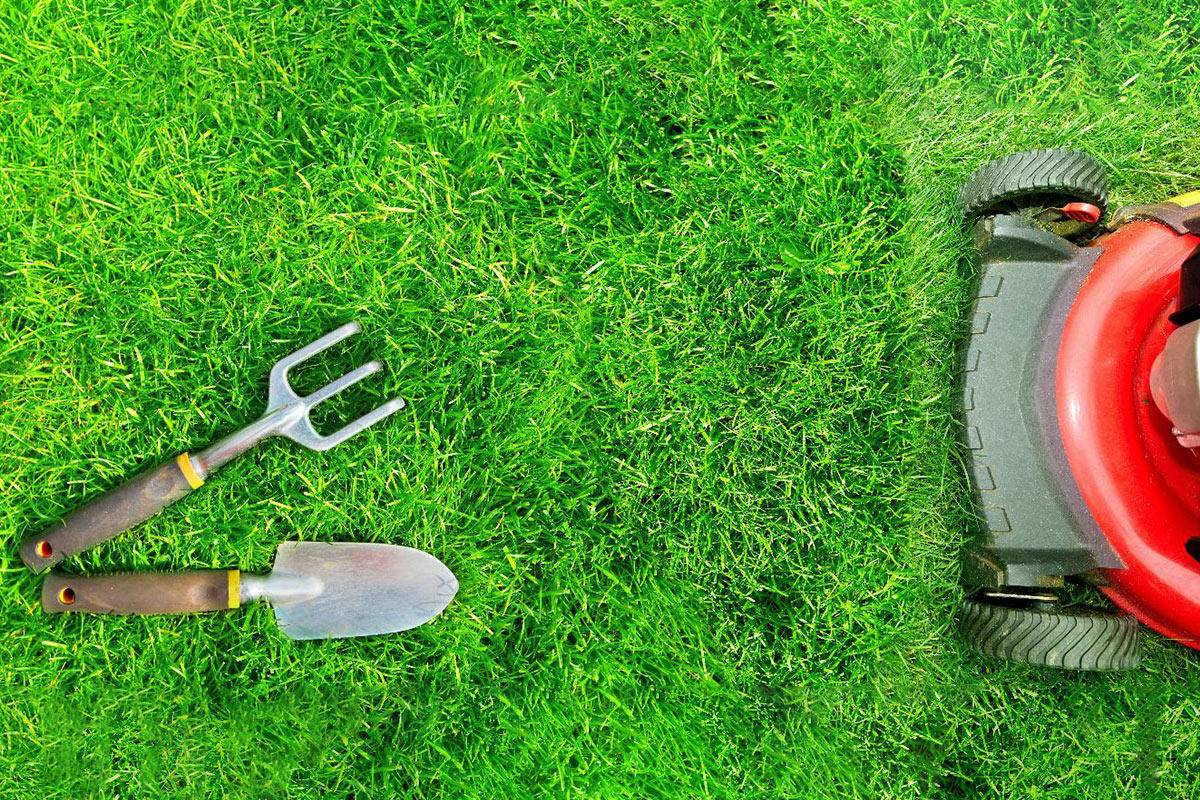 Lawn Care Gardening Diy Vs Hiring A Professional